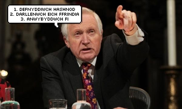 dafydd-d-wigflip-saywhat